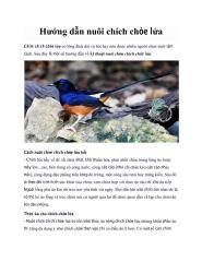 Hướng dẫn nuôi chim chích chòe lửa.pdf
