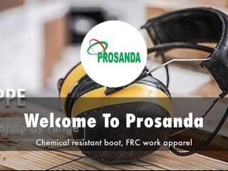 Prosanda Presentation.pdf